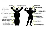 Přirozené způsoby, jak zvýšit hladinu testosteronu